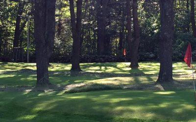 Annual Pine Hollow Little Par 3 Golf Championship 2020