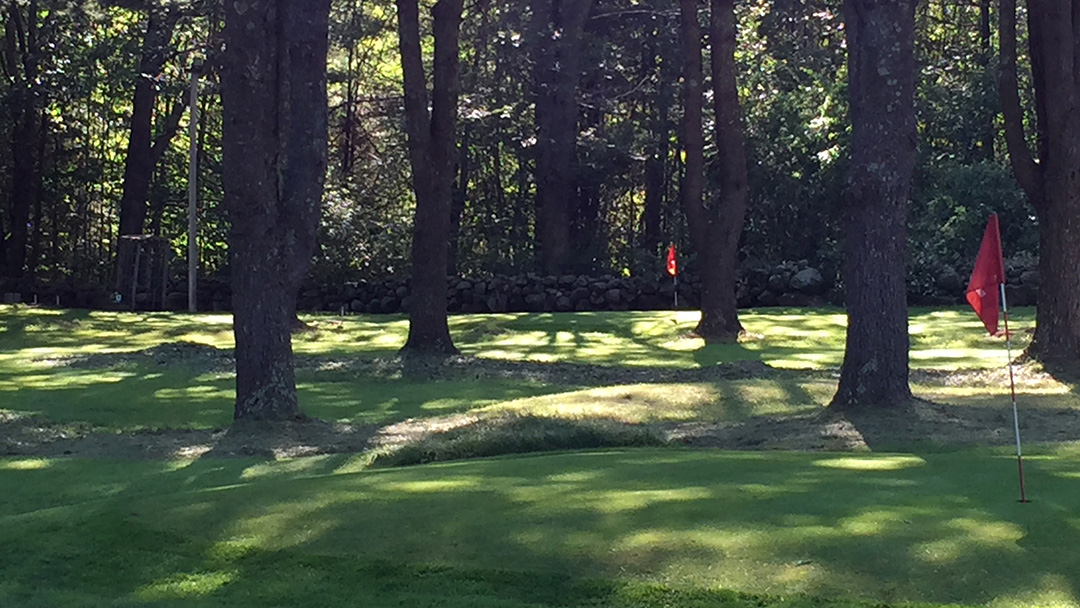 golf course - view of 2 red flags among tall pines